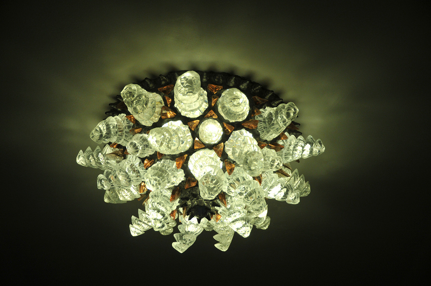 anemone-soffitto-1